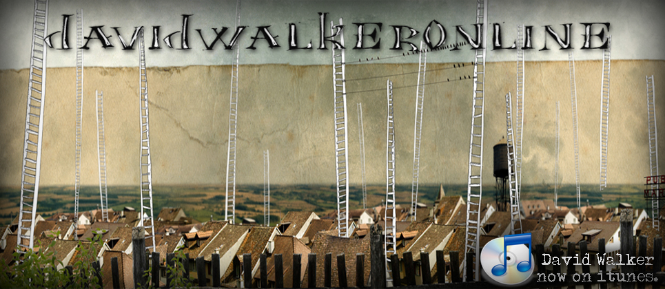 davidwalkeronline.com